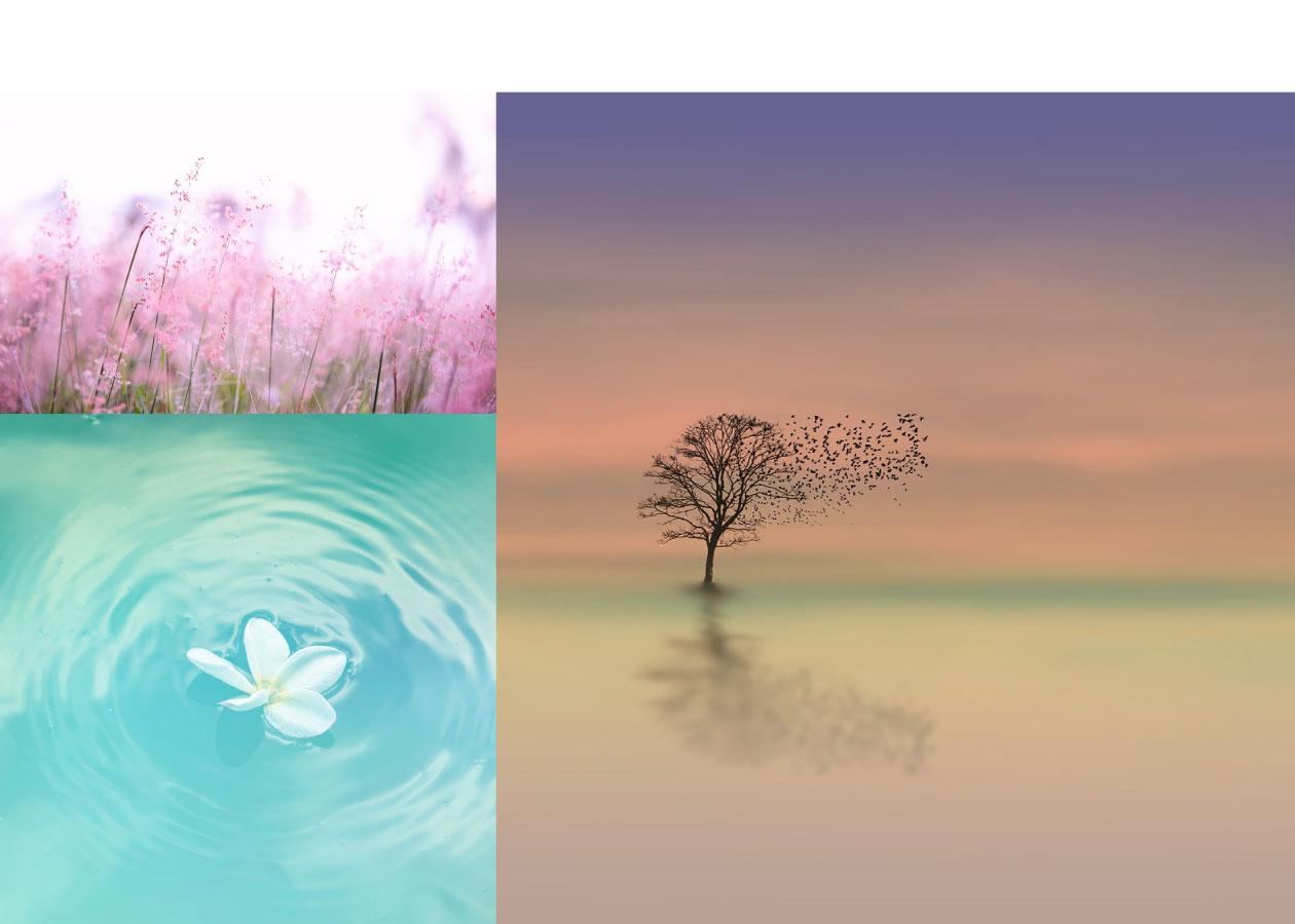 瞑想で自己肯定ができるようになった体験談