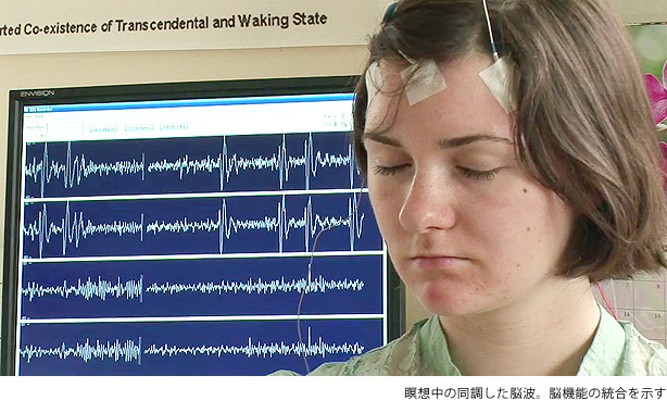 瞑想中の同調した脳波