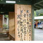 若者に人気! 島根県の自動車教習所「Mランド」は、人と人が高め合い、心を養う