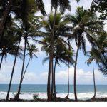 カリブ海にあるドミニカ国で囚人の矯正教育に超越瞑想を採用